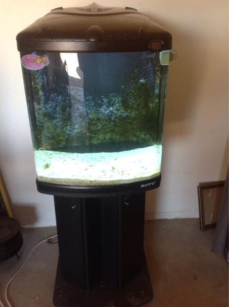 1399907929_644587091_1-buyo-marine-aquarium-130-liter-fish-tank-constantia-kloof.jpg