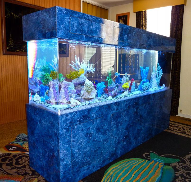 300g Aquarium.jpg