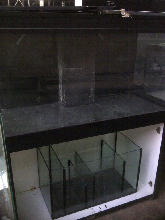 4foot with sump and black silicon R3000.jpg