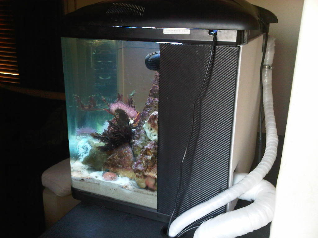 Temperate Boyu Tl550 Marine Aquariums South Africa