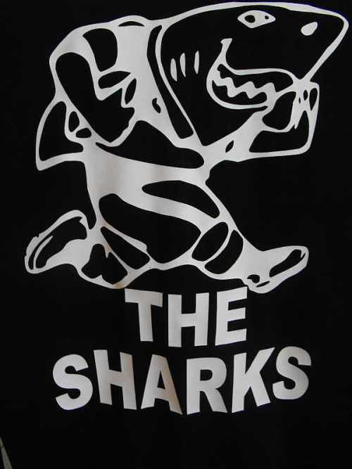 920391_090416170434_Sharks_Logo.jpg