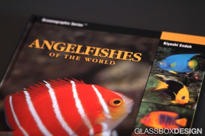 Angelfishes-of-the-World-420x279.jpg