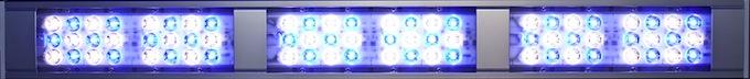 aquabar-led-7.jpg