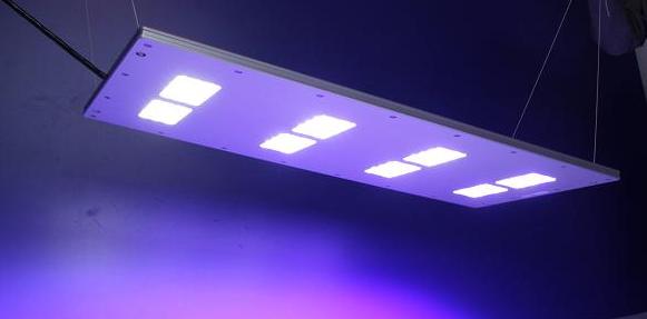 aqualed-led-light-7.png