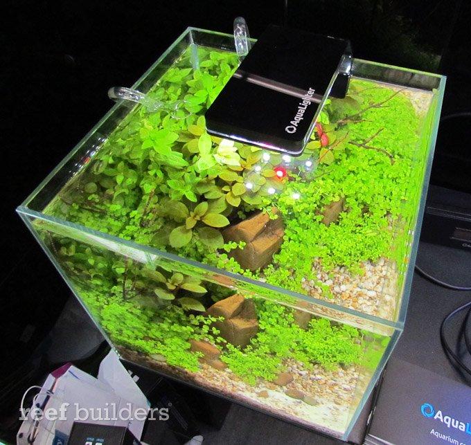 aqualighter-led-1.jpg