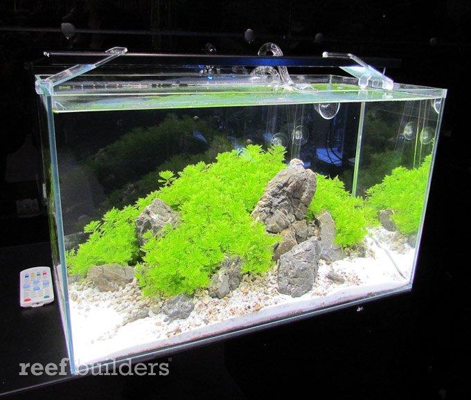 aqualighter-led-3.jpg