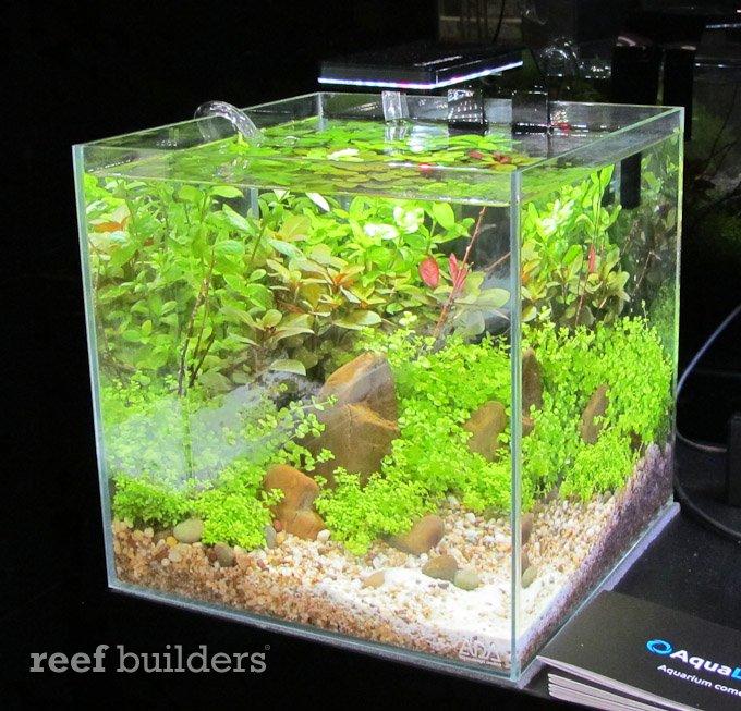 aqualighter-led-4.jpg