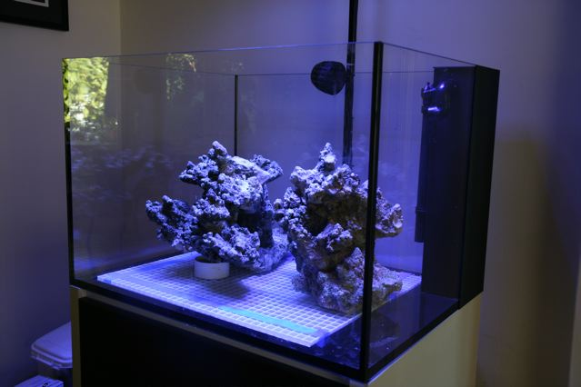 aquascape3Q.jpg