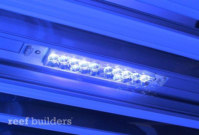 ati-led-powermodul-t5-hybrid-5.jpg