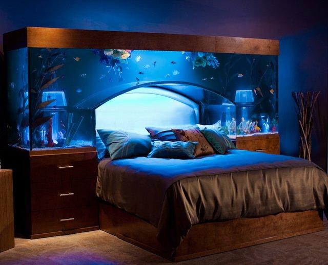 atm-aquarium-bed.jpg