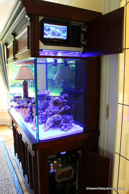 Blue-World-Aquariums-2.jpg