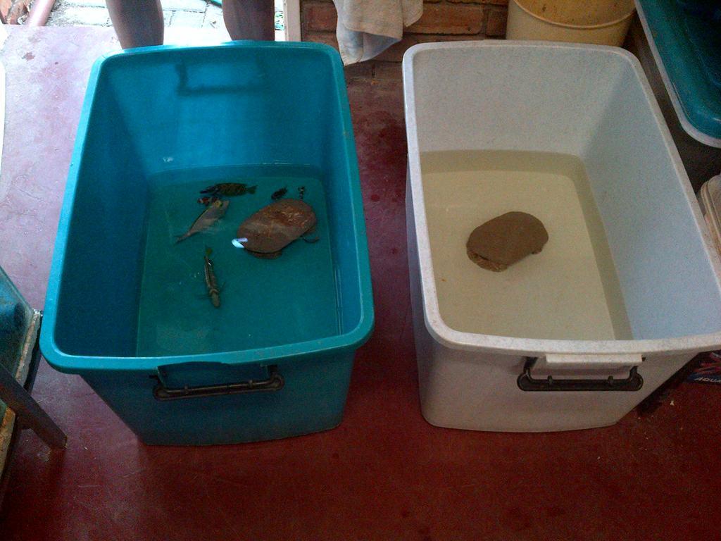 Bucket old vs new.JPG