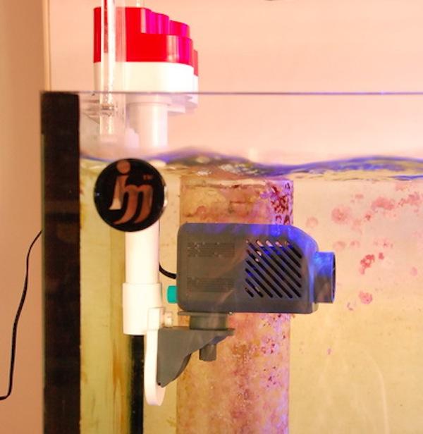 ceto-pump-oscillator.jpg