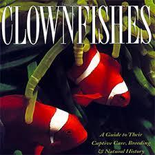 clownfishes.jpg