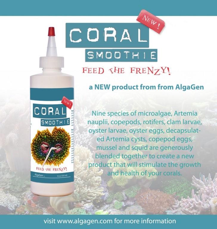 coral-smoothie-003-970x1024.jpg