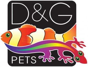 dg-pets-logs-300x229.jpg