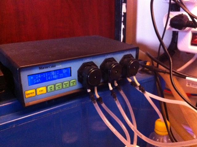 Dosing pump.jpg