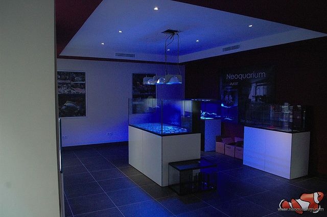 elos-aquastudio-france-3.jpg