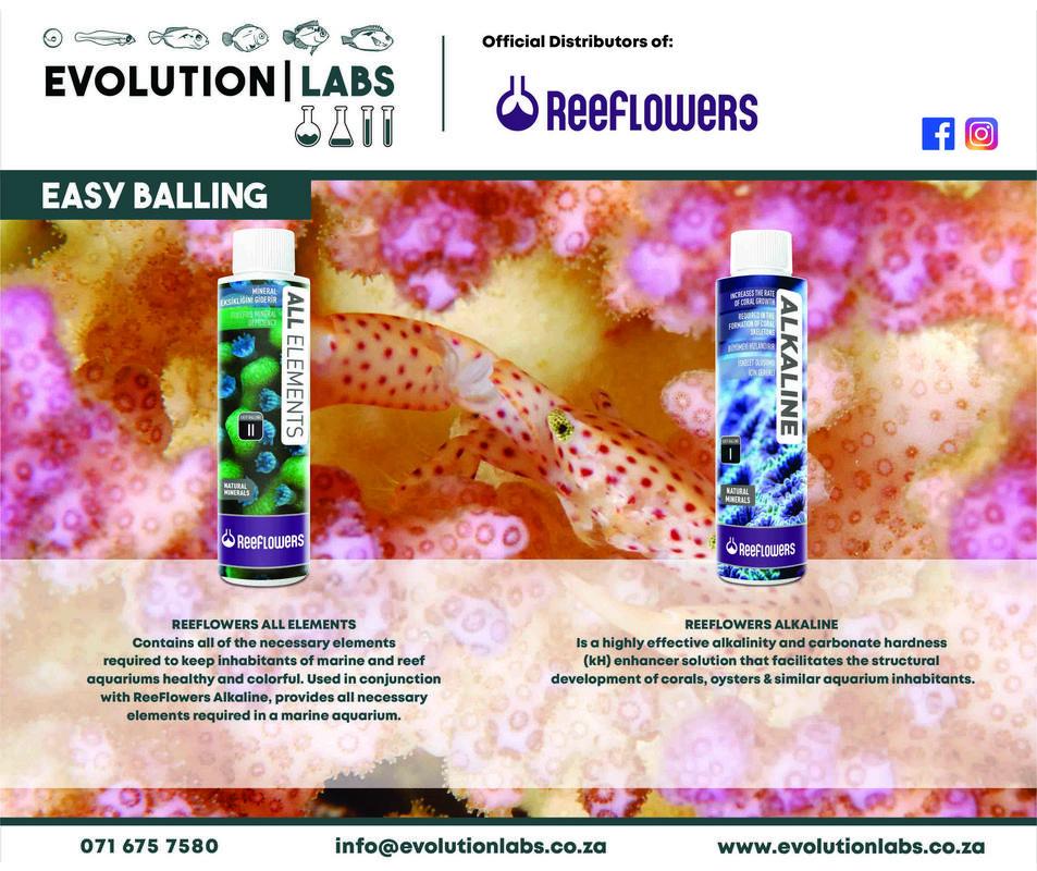 Evolution-Labs-ad-Reeflowers-1.jpg