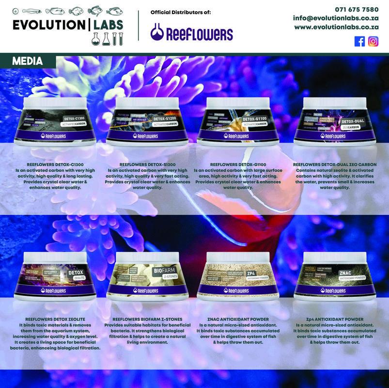 Evolution-Labs-ad-Reeflowers-10.jpg