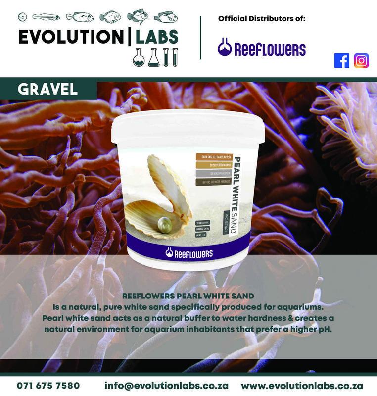 Evolution-Labs-ad-Reeflowers-11.jpg