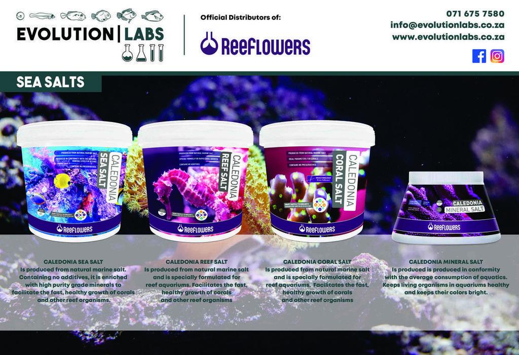 Evolution-Labs-ad-Reeflowers-3.jpg