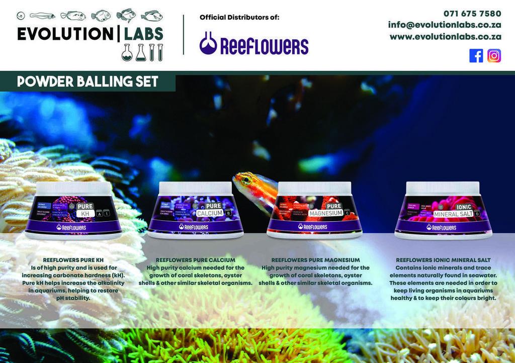 Evolution-Labs-ad-Reeflowers-5.jpg