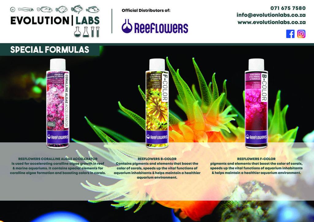 Evolution-Labs-ad-Reeflowers-7.jpg