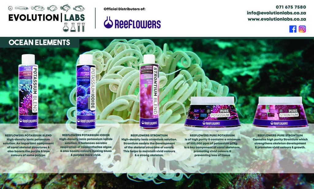 Evolution-Labs-ad-Reeflowers-8.jpg