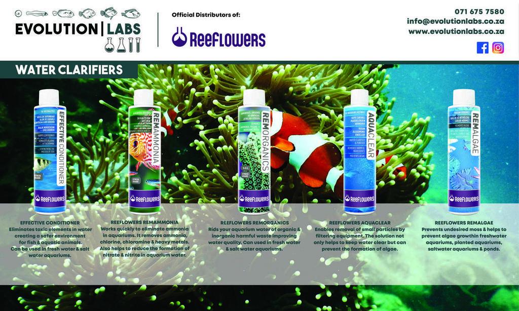 Evolution-Labs-ad-Reeflowers-9.jpg