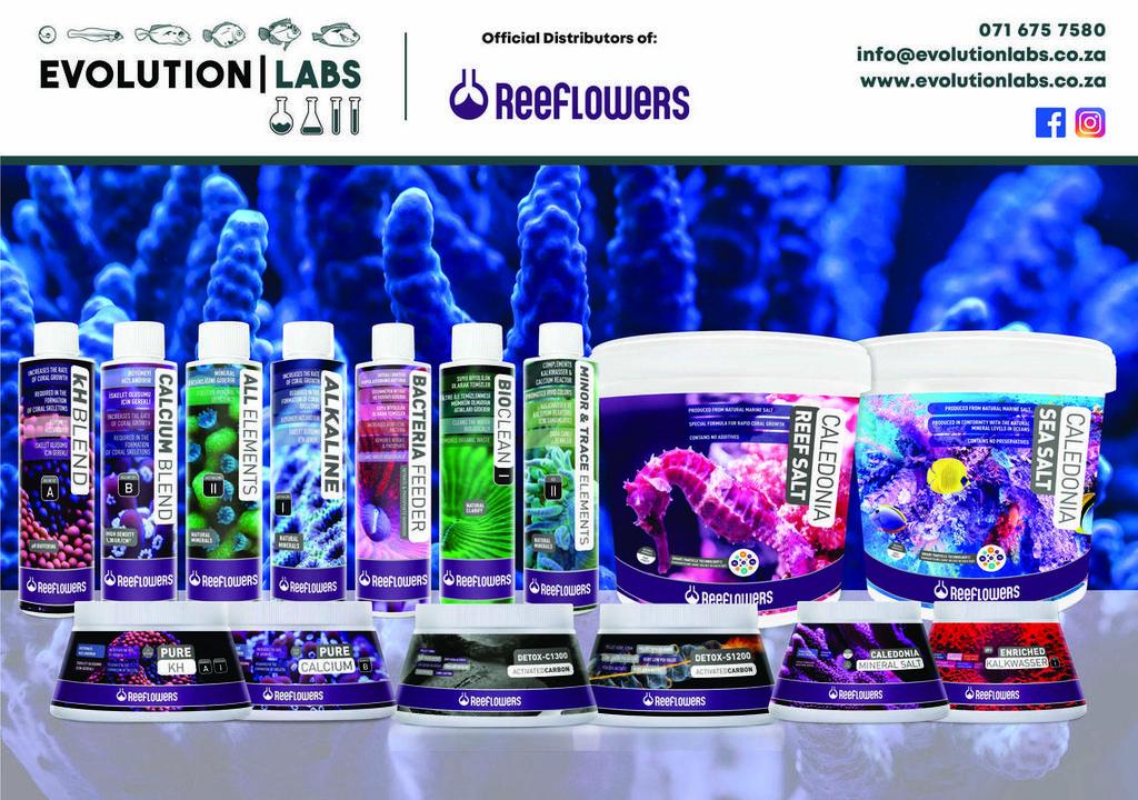 Evolution-Labs-reeflowers-range.jpg
