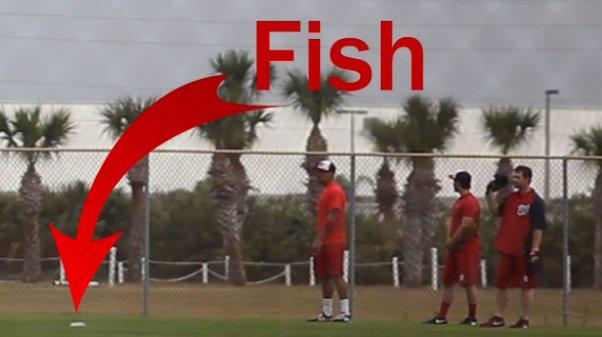 fish-nationals.jpg