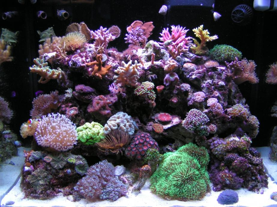 FTS 5-14-10 Small.jpg
