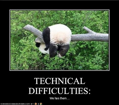 funny-pictures-panda-has-technical-difficulties1.jpg