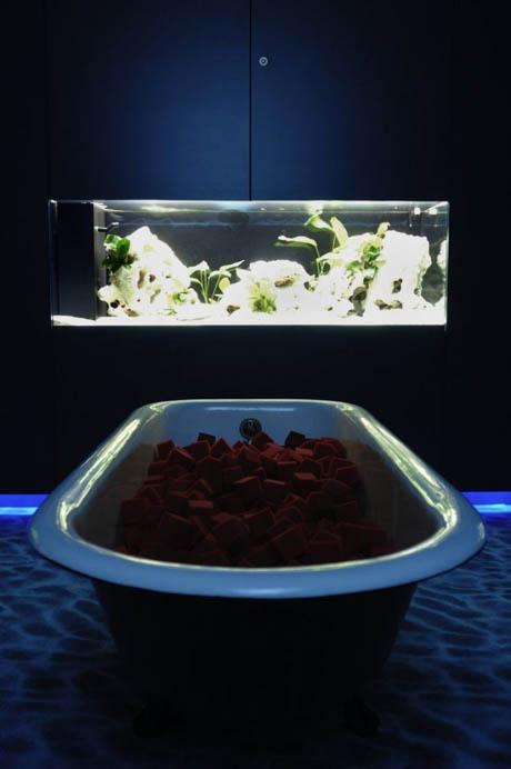 google-office-aquariums-1.jpg