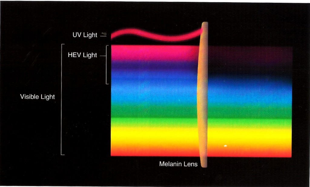 HEV-UV-light-1024x620.jpg
