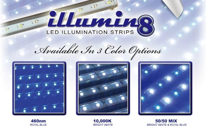 Illumen8-led-striplight.jpg