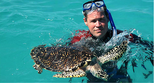 jeff-corwin-sea-turtle.jpg