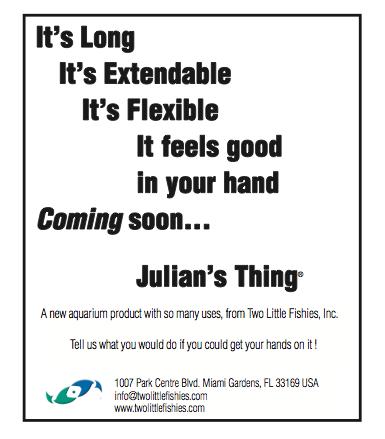 julians-thing.png