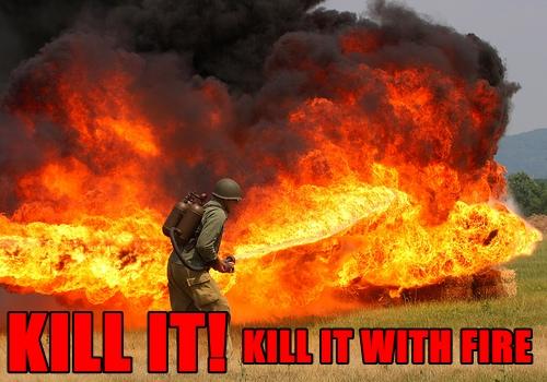 KILL_IT_WITH_FIRE_FUNNY_FORUM_PICS-s500x350-150245.jpg
