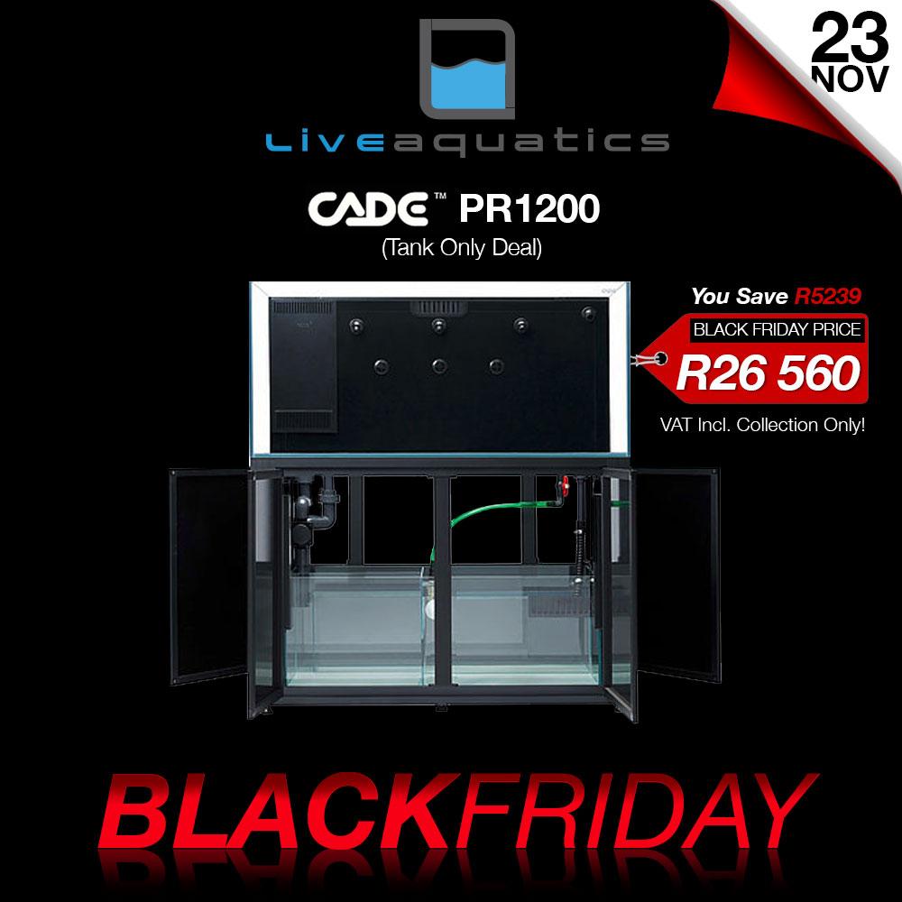 LA-black-friday-cade-pr1200.jpg