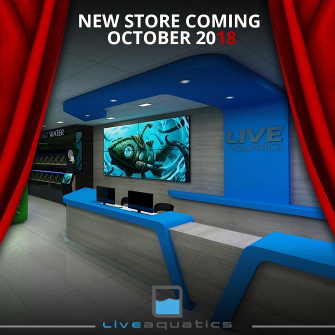 la-new-store-2.jpg