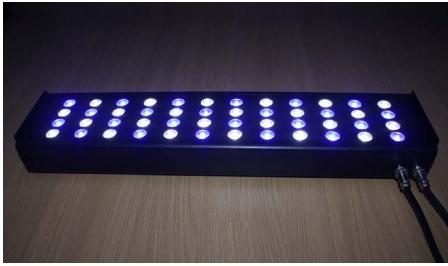 LEDLIGHTS.jpg