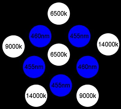 LEDs Layout.jpg