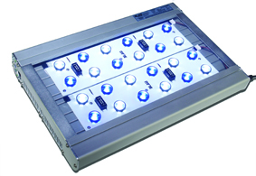 Lumina-LED-36-72.jpg
