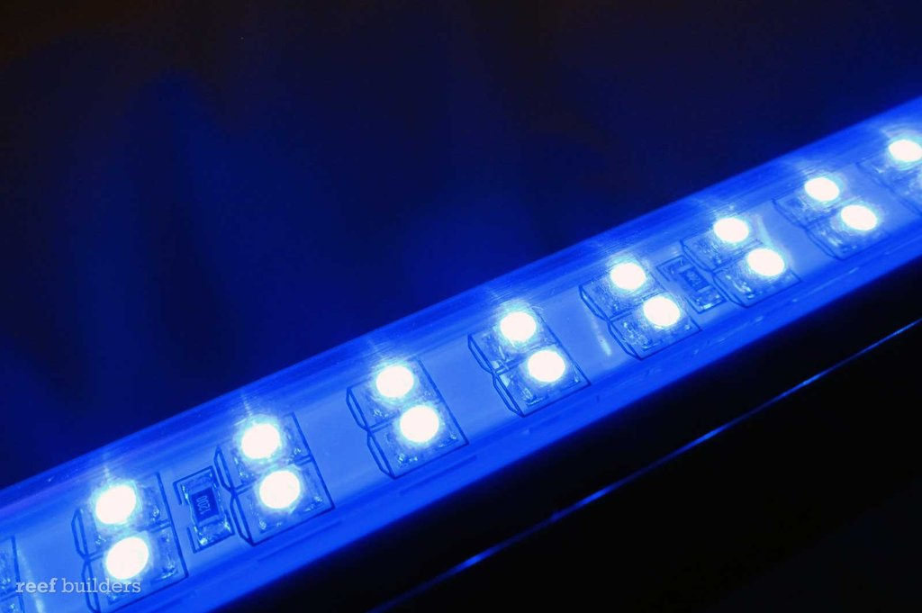marineland-blue-accent-hidden-lighting-strips-5.jpg