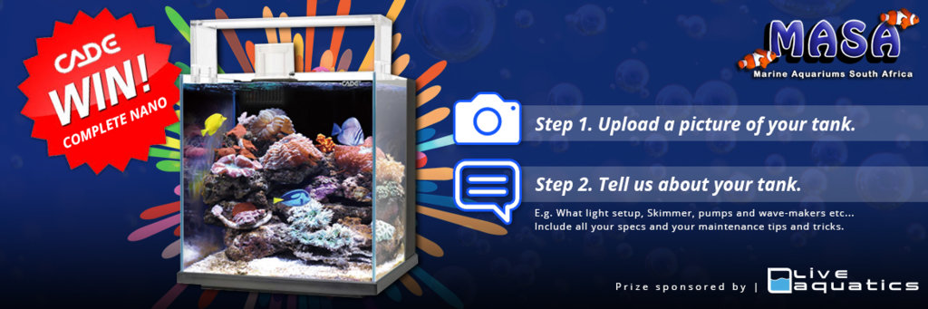 comp win a complete nano marine aquariums south africa