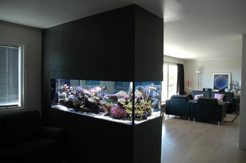 modern-reef-9.jpg