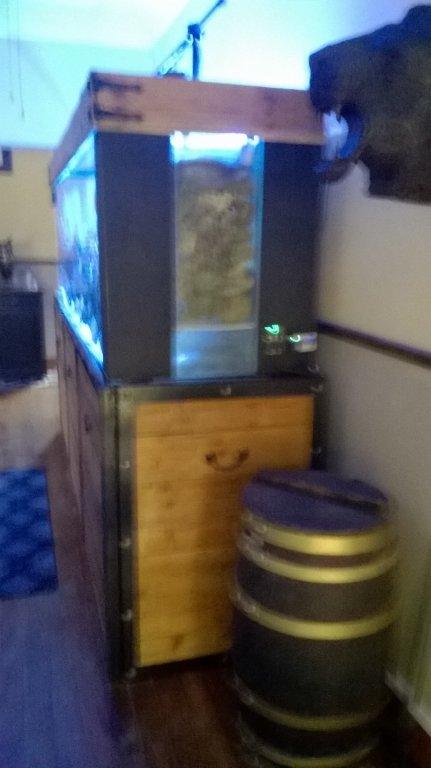 my tank4.jpg