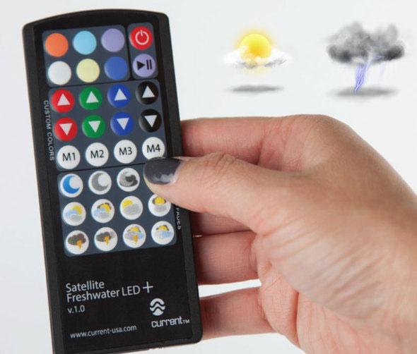 New-Flexible-LED-Strips-3.jpg